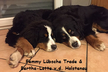 Femmy Lübsche Trade & Bertha-Lotte v.d. Holstenau