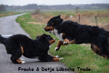 Frauke & Detje Lübsche Trade