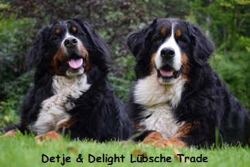 Detje & Delight Lübsche Trade