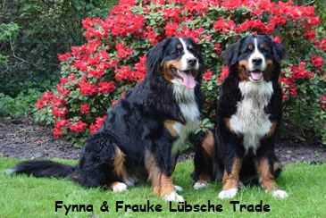 Fynna & Frauke Lübsche Trade