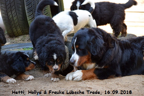 Hetti, Hollye & Frauke Lübsche Trade, 16.09.2018