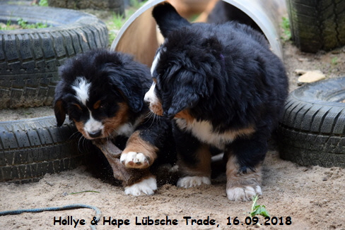 Hollye & Hape Lübsche Trade, 16.09.2018