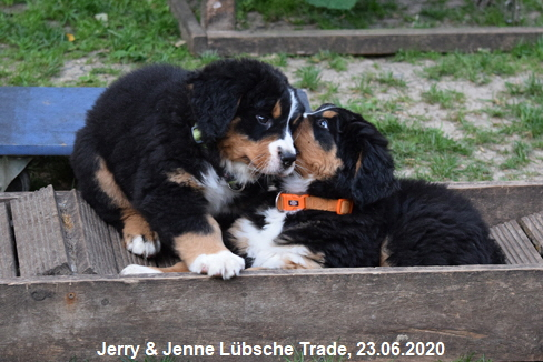 Jerry & Jenne Lübsche Trade, 23.06.2020