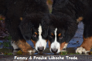Femmy & Frauke Lübsche Trade